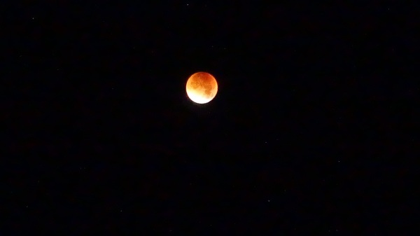 Blood Moon best shot